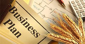 Бизнес план производства лимонада, сидра, дюшеса – создавайте бизнес с вашим ребенком